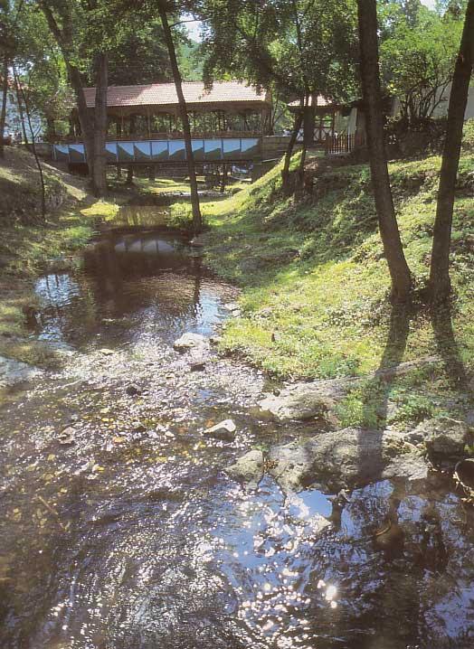 brestovacka-banja-izvor